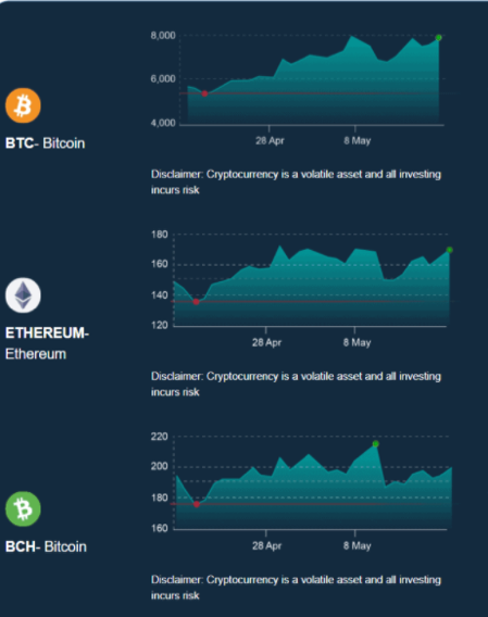 Bitcoin Loophole interface