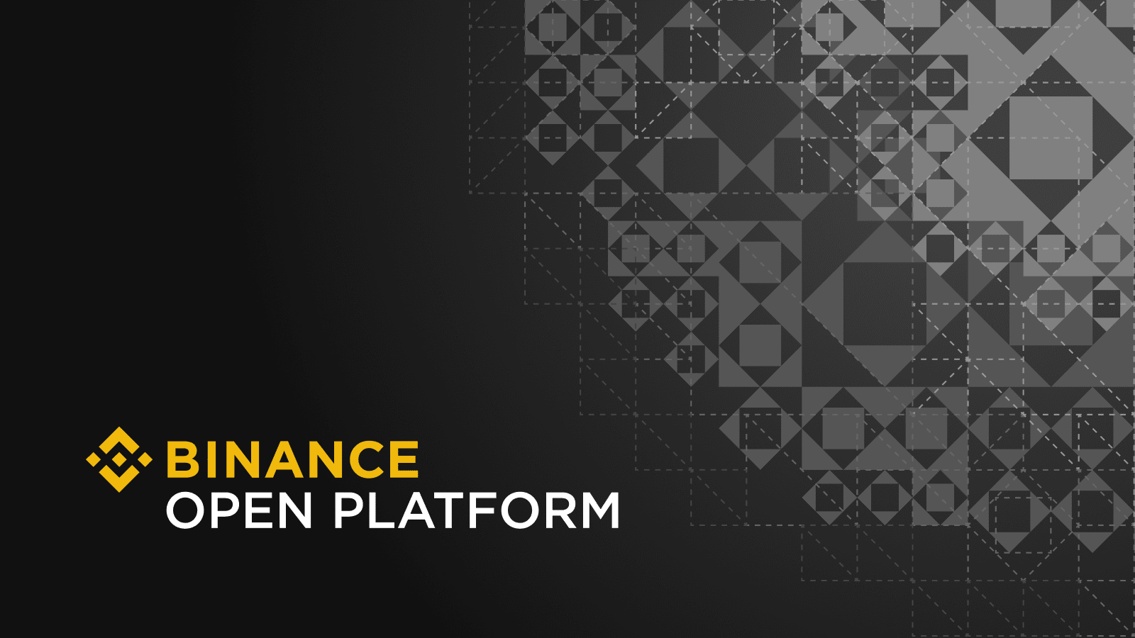 Binance - The Platforms