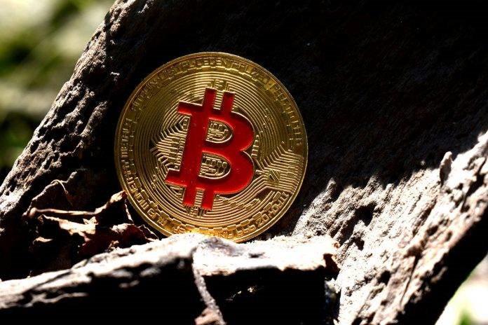 Salvador's Bitcoin Law Becoming