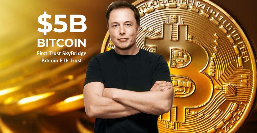 ilon musk bitcoin